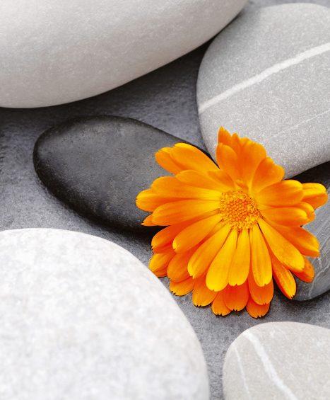Fototapet A Heart among Stones