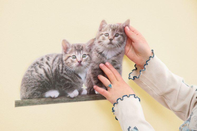 Sticker Kitty
